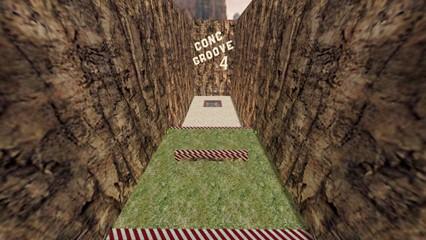Conc groove2